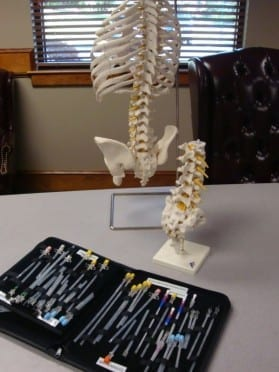 Model of Skeleton with Medical Products